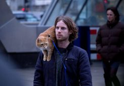 a-streetcat-named-bob-luke-treadaway-768x539-c-default
