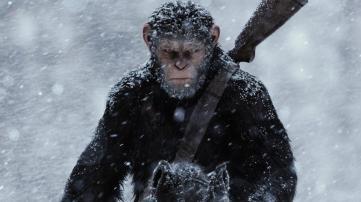 apes-1_1
