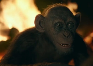 Bad_Ape